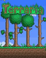 Terraria (2011)