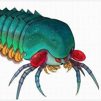 Ученые подбираются к разгадке происхождения пауков и скорпионов
