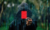 Сайт и смартфон стали основными «дырами» в безопасности