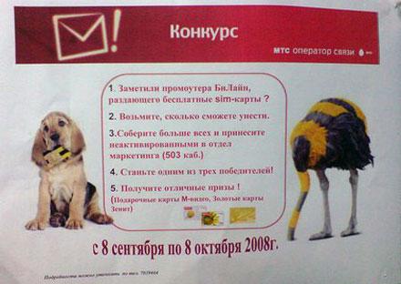 МТС объявила конкурс среди сотрудников по сбору бесплатных SIM-карт Билайна