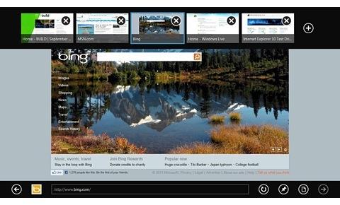 В Metro UI-версии Internet Explorer 10 не будет плагинов, включая Adobe Flash Player