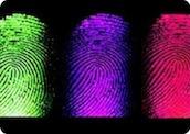 Как оптимизировать расходы на персонал: плюсы биометрии