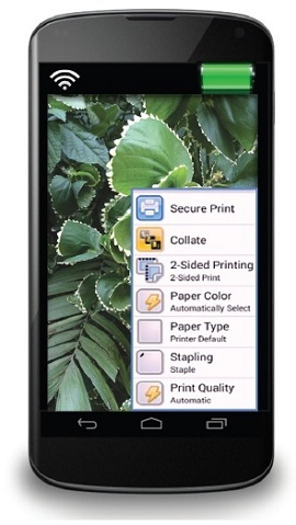 Xerox Print Service предлагает гибкую систему настроек