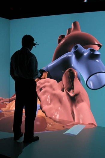 Первая модель сердца, созданная в рамках проекта «Живое сердце» (Living Heart Project)