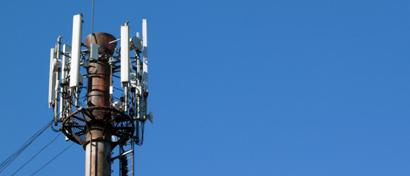 «Билайн» и «Мегафон» скупили 4G-частоты на 2,1 млрд рублей