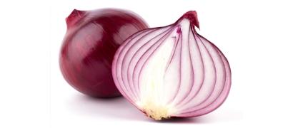 Анонимный браузер Tor включил защиту от спецслужб. Опрос