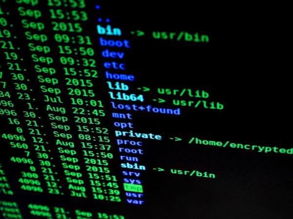 hacking1685092960720.jpg