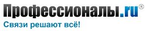 еловая социальная сеть — Профессионалы.ru