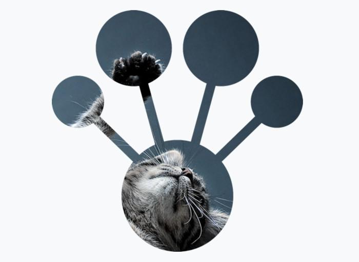 «Яндекс» представил новый метод машинного обучения CatBoost, выложил его воткрытый доступ