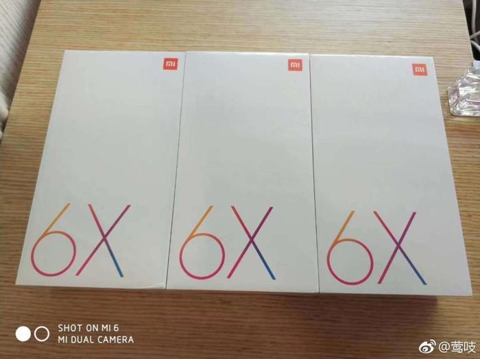 6x_3.jpg