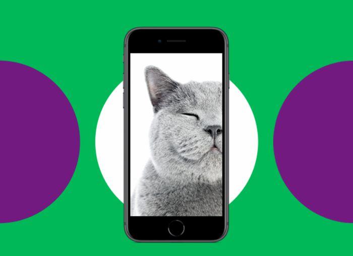«МегаФон» запускает trade-in для телефонов  Самсунг  иApple