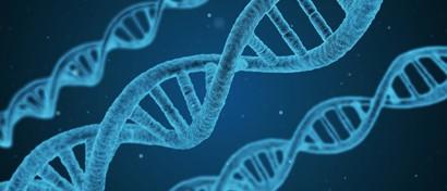 Разработана технология хранения данных в ДНК