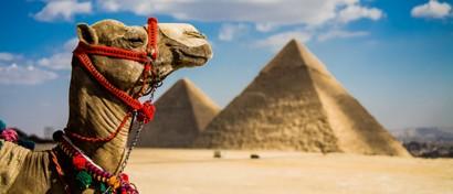 Власти Египта требуют денег у хозяев «Билайна»