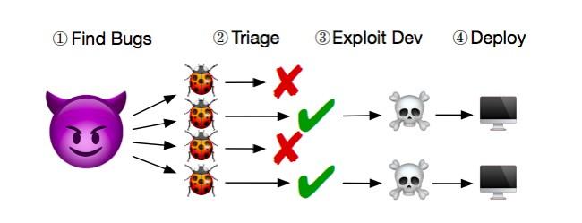 bug650.jpg