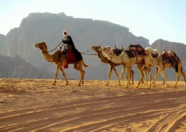 beduin600.jpg