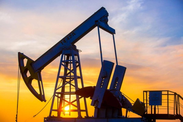 oil600.jpg
