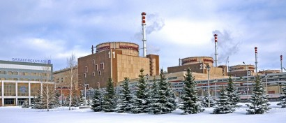 Уволившийся из «Росатома» критик иностранного ПО на АЭС нашел 100 млн руб. и создал ему замену
