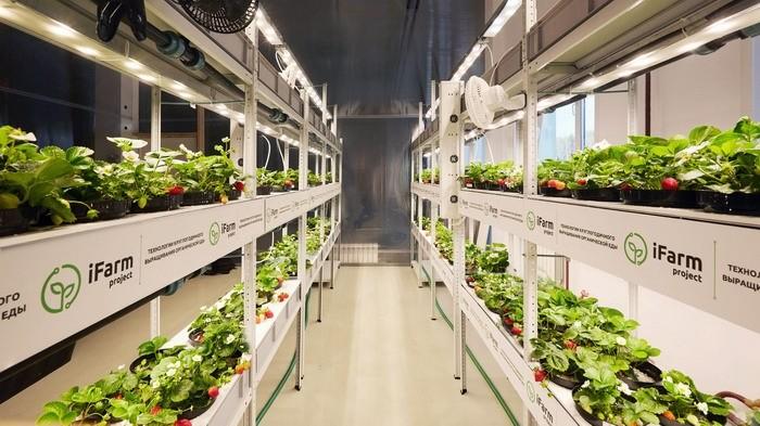 farm602.jpg