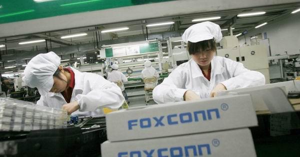 fox600.jpg
