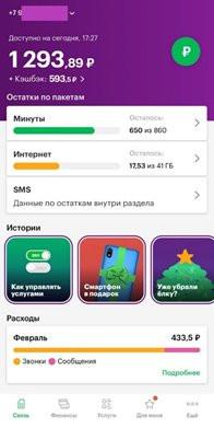 megafon3.jpg