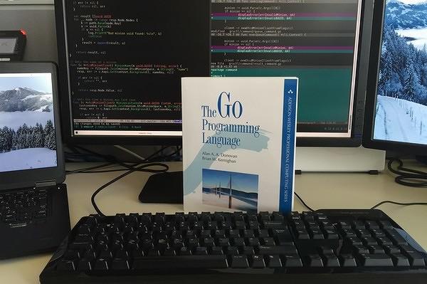 go600.jpg