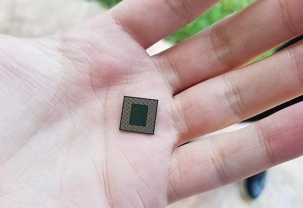 chip600.jpg