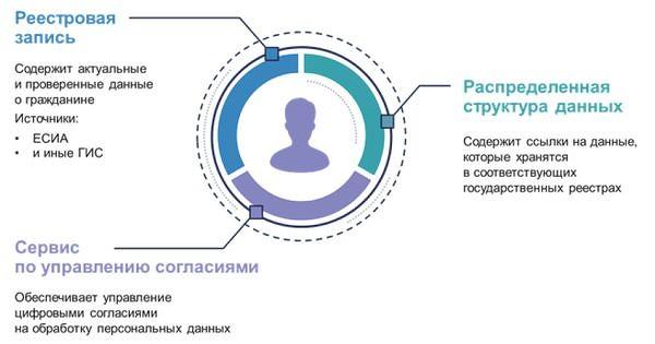 dp2.jpg