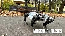 Российская робособака