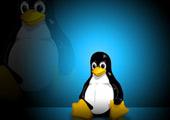 Государство переходит на Linux?