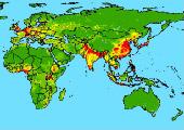 ИТ в медицине: мировая практика расширяется