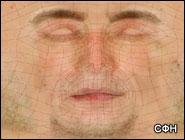 Наша кожа может слышать Согласно последним исследованиям, мы не только слышим при помощи ушей...
