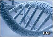 Расследование: остановилась ли эволюция человека?