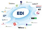 Особенности российского EDI-диалекта