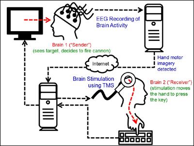 Схема интерфейса мозг-мозг (изображение: University of Washington) .