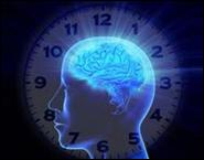 Внутренние часы человека расскажут о возрасте органов