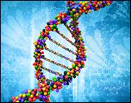 Создан карманный секвенсор ДНК