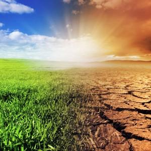 Правительства не договорились о спасении климата планеты