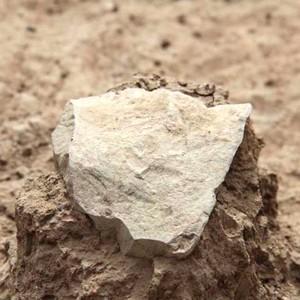 Найдено древнейшее каменное орудие труда