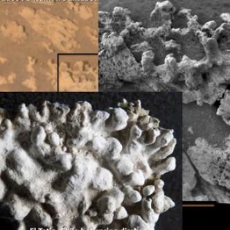 Кремниевая инопланетная жизнь возможна