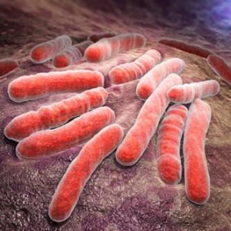 Разработка резидента «Сколково» повышает эффективность лечения туберкулеза
