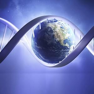 Ученые не нашли предела продолжительности жизни
