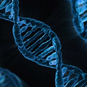 Ученые удалили ген, вызывающий распространенную болезнь сердца