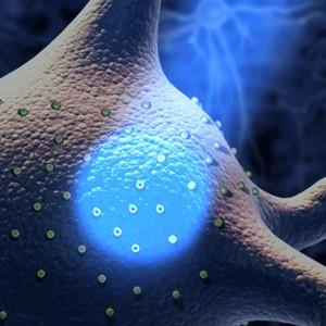 Российские ученые исследуют новый инструмент для оптогенетики