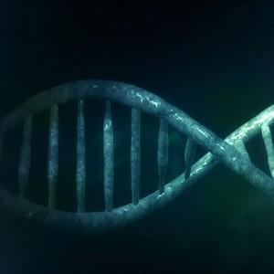 Ученые повысили точность CRISPR в десять раз