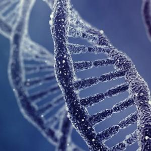 Есть и не толстеть благодаря генной терапии