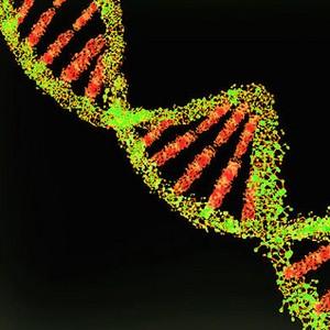 Новый метод CRISPR: эффективное лечение без удаления генов