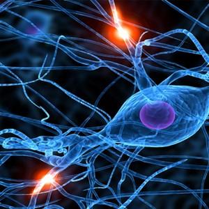 Синтетический синапс: еще ближе к искусственному интеллекту