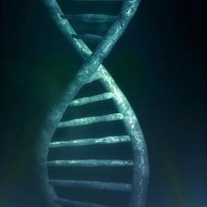 Ученые нечаянно обернули вспять часть процессов старения