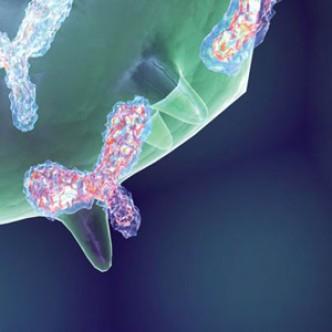 В России создают синтетические антитела для лечения рака