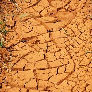 Дальше будет горячее: ученые прогнозируют жару в ближайшие годы